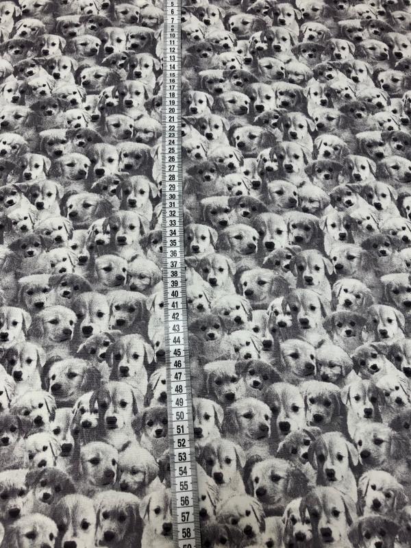 Baumwollstoff Sweet Puppies